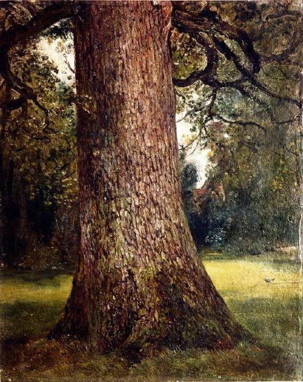 """John Constable, Studio del tronco di un albero di olmo, 1823. Olio su tela. Londra, Victoria and Albert Museum.  """"Il suono dell'acqua che sfugge alle dighe dei mulini, i salici, le vecchie assi fradicie, i luoghi paludosi e le costruzioni in mattoni, queste cose io amo. Queste immagini hanno fatto di me un pittore e io sono loro grato."""" (J. Constable)"""