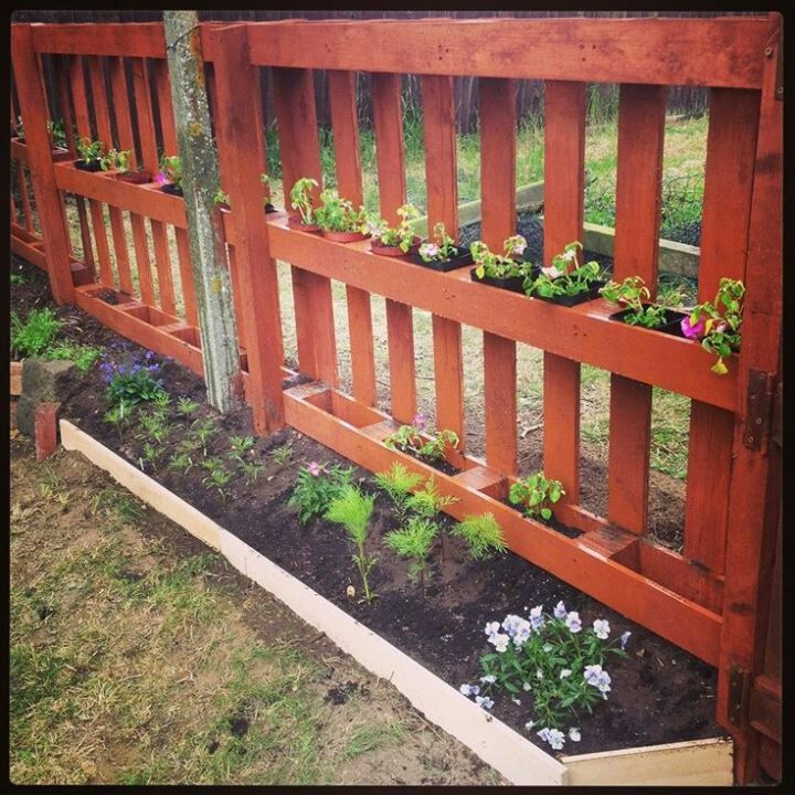 Pallets and plants, you can make these into fences and gates as well as decor!!