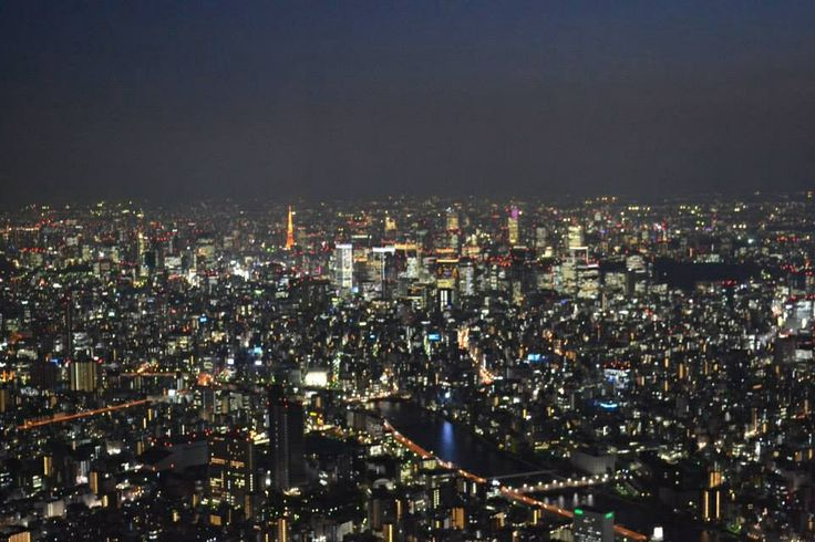 Tokyo City from the Skytree.