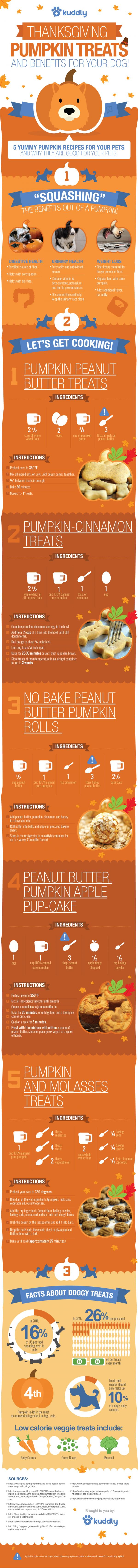Thanksgiving Pumpkin Treats and Benefits For Your Dog!