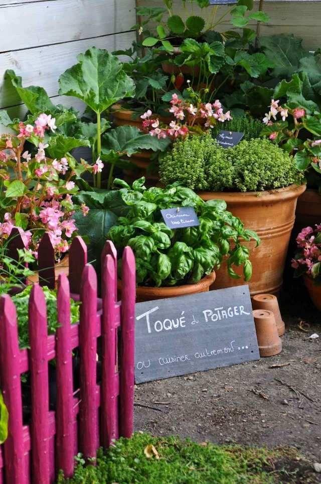 Potager Dekorativer Garten Idee Kräuter Pflanzkübel