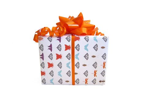 'Bugs & Bling' Dirty Wrapping Sample – Dirty Lola's