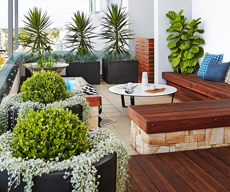 See how landscape designer Sam Snaith creates a tranquil garden and entertaining space on a high-rise urban Sydney balcony.