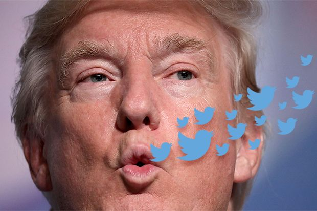 The imperial presidency of Donald Trump: Stand by for tweets divorced from reality and a Cabinet full of corporatists