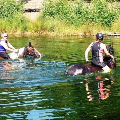 Paardrijden Veluwe