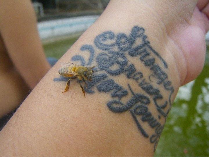 Henna Tattoo Quezon City : Crazy tattoo ideas henna tattoos quezon city « top