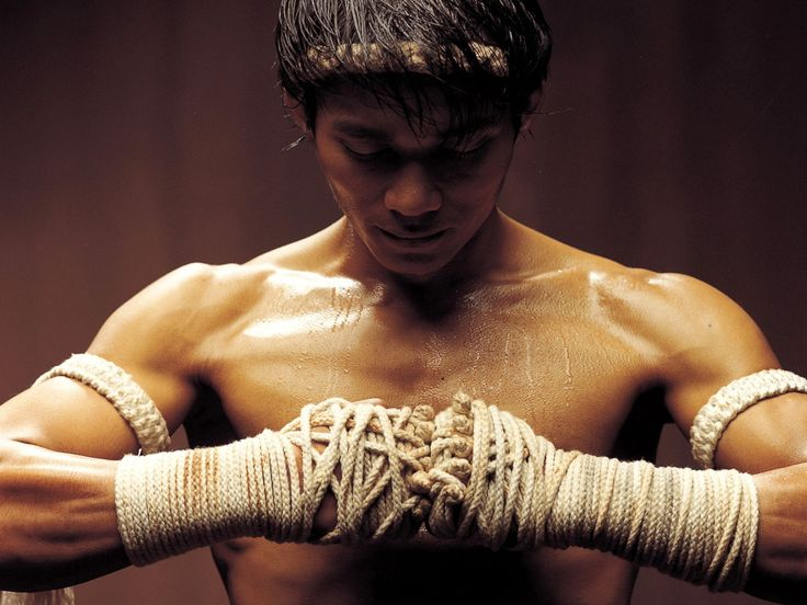 Tony Jaa - Like a Thai Bruce Lee... Guy fucks shit up in 'The Protector', which is like the movie version of a Double Dragon game. (Because we've forgotten the actual Double Dragon  movie 'cause it was so fucking shit!) Tony for president.