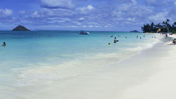 ハワイに行ったら欠かせない!オアフ島の絶景スポット5選 | アメリカ | Travel.jp[たびねす]