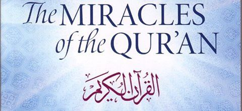 Learn Arabic and the Holy Qur'an to Know about the miracles Allah created For Humans Join Now    http://quranconnection.com/contact-us-to-learn-arabic-now/?wpam_id=30
