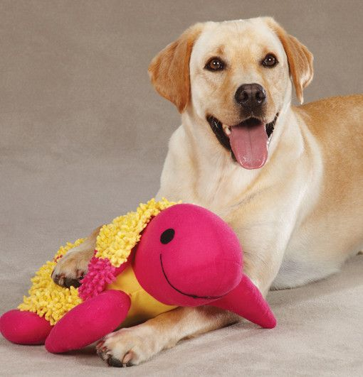 """Big Dog Toy Giant Moppy Tropical Turtle Dog Toy Is 16 1 2"""" Great Dog Gift"""