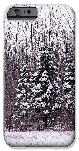 Winter White Magic IPhone 6s Case for Sale by Leslie Montgomery.  Protect your iPhone 6s with an impact-resistant, slim-profile, hard-shell case.  The image is printed directly onto the case and wrapped around the edges for a beautiful presentation.  Simply snap the case onto your iPhone 6s for instant protection and direct access to all of the phone's features!