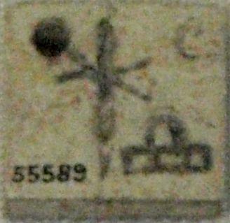 Placchetta di Hotep-Neith, British Museum, Londra. È visibile il simbolo delle frecce incrociate sullo scudo, quello della dea Neith usato dalle prime regine di Egitto.