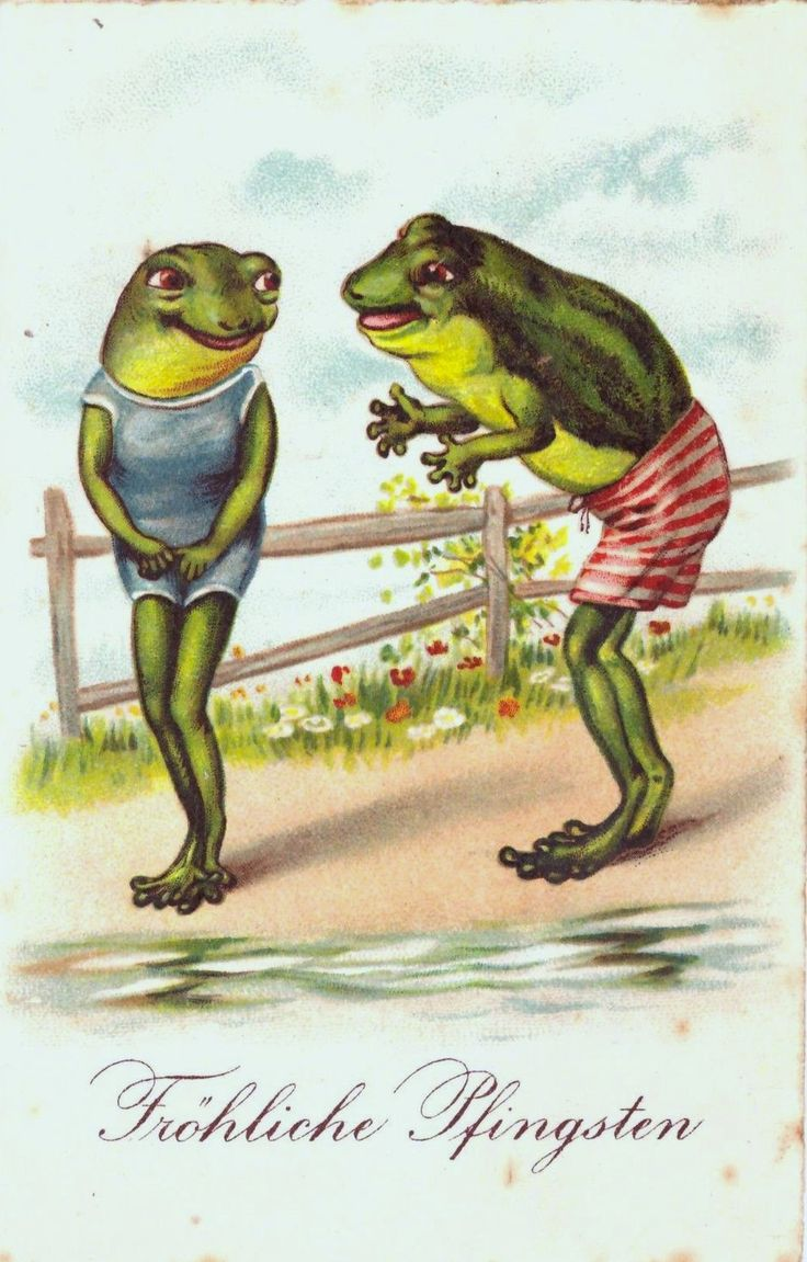 5124 Best Frogs Images On Pinterest Frogs Amphibians And Combat Boots