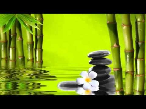 3 horas de sonidos de agua para relajacion - YouTube