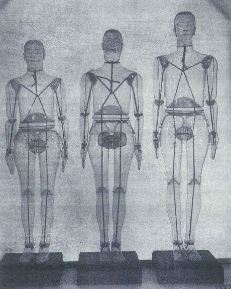 Aanthropometric manikins from the US Army Air Forces survey. Source: Francis Randall et al., Human Body Size in Military Aircraft and Personal Equipment (Dayton, 1946), p. 196
