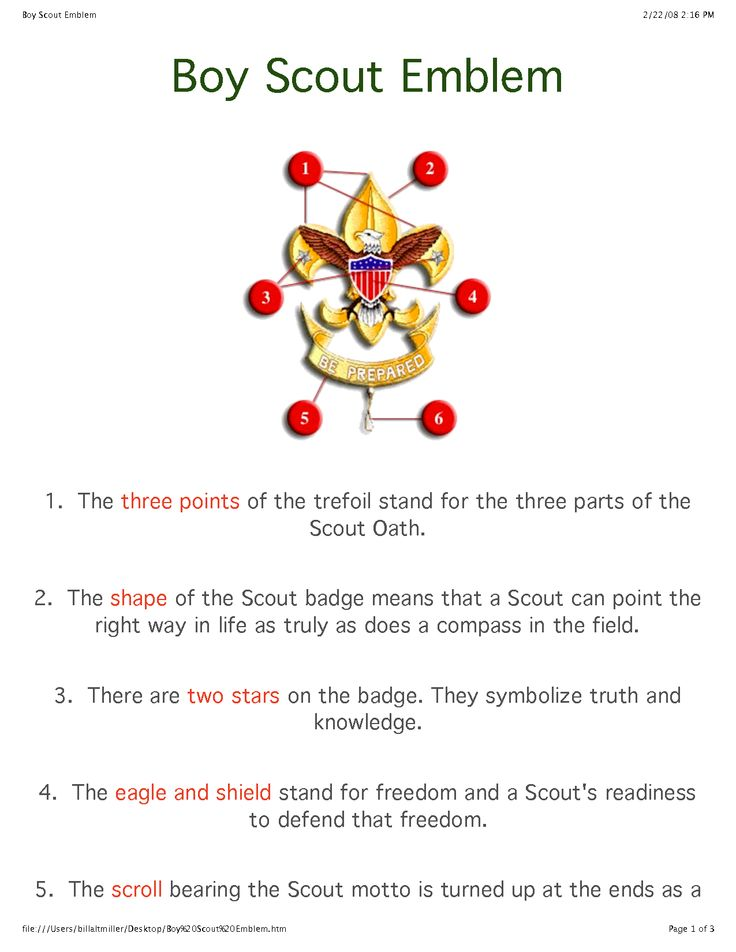 Boy Scout Badge Meaning | Boy Scout Symbol