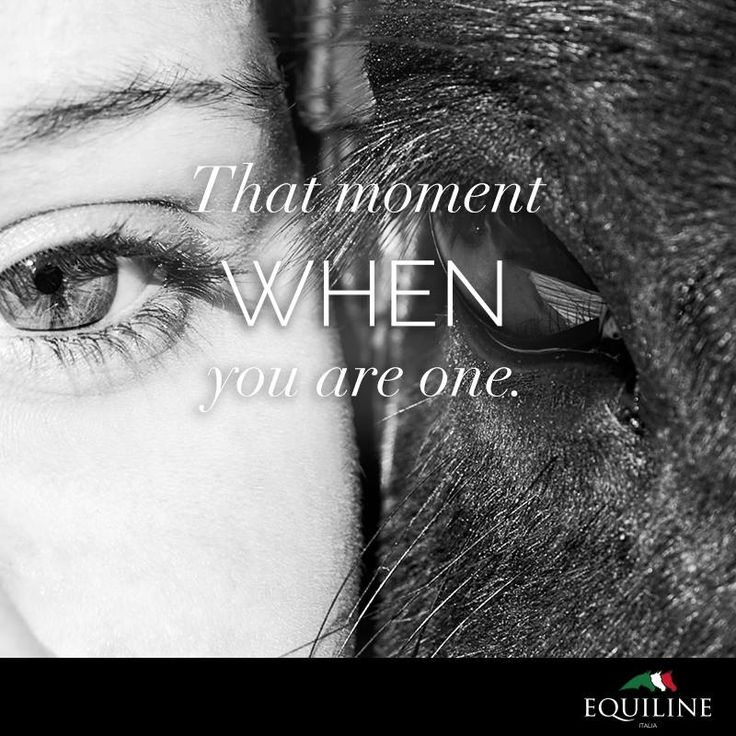 That moment when you are one. #equiline #horse #quote