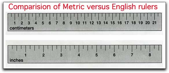 13 Best Images About How To Use A Centimeter For Kids On