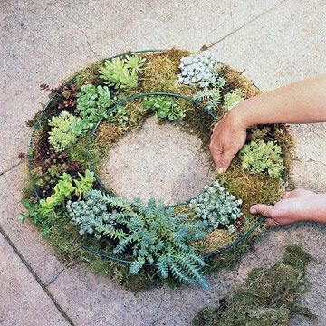 A living wreath of succulents http://www.bhg.com/gardening/design/projects/plant-a-living-wreath/#page=1