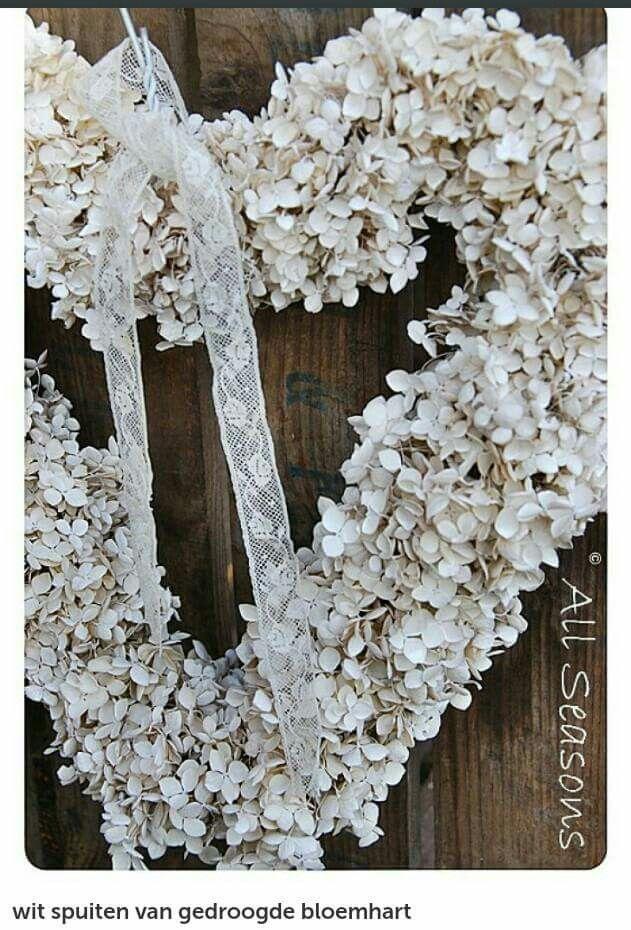Gedroogde hortensias wit spuiten