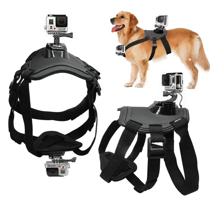 Ever experienced life from your best mate's perspective? The Go Pro dog harness allows you to take advantage of a handsfree adventure giving you the ultimate recording experience with your best friend