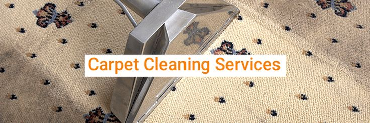 Zenith Cleaning Services is one of the best companies that offer a wide selection of carpet cleaning Brisbane.