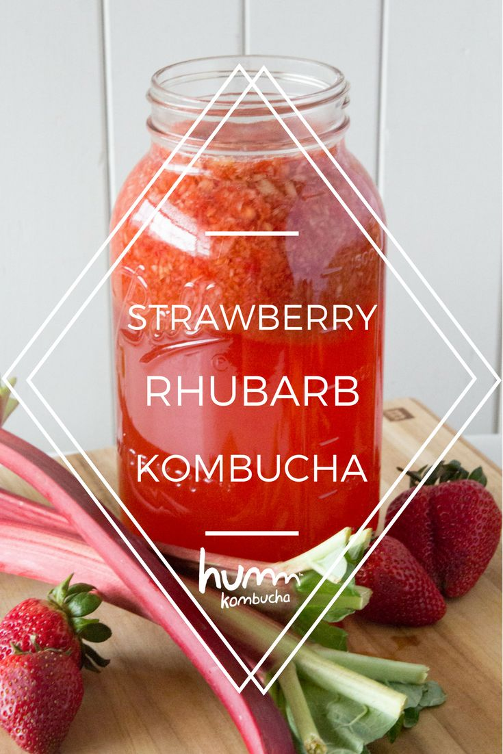 Strawberry Rhubarb Kombucha - Spring gives us all a can-do attitude; yes we CAN clean out the garage, yes we CAN start up that new hobby and yes we CAN brew our own a kombucha recipe! Strawberry Rhubarb –– This is pure pie in a glass, minus the ala mode. Why not make a kombucha float while you're at it?
