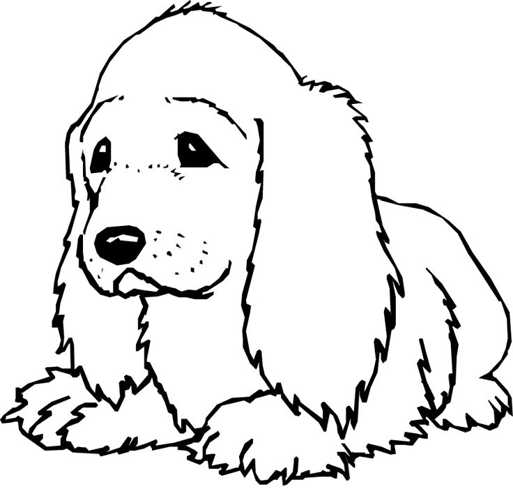 Hairy dog coloring page