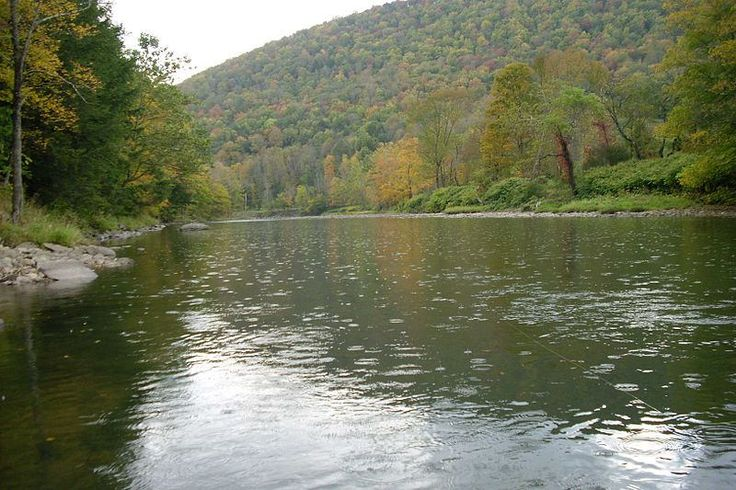 179 best best things images on pinterest in new for Fly fishing near me