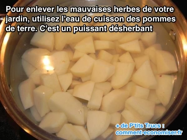 Enlever les mauvaises herbes du jardin avec l'eau de cuisson des pommes de terre