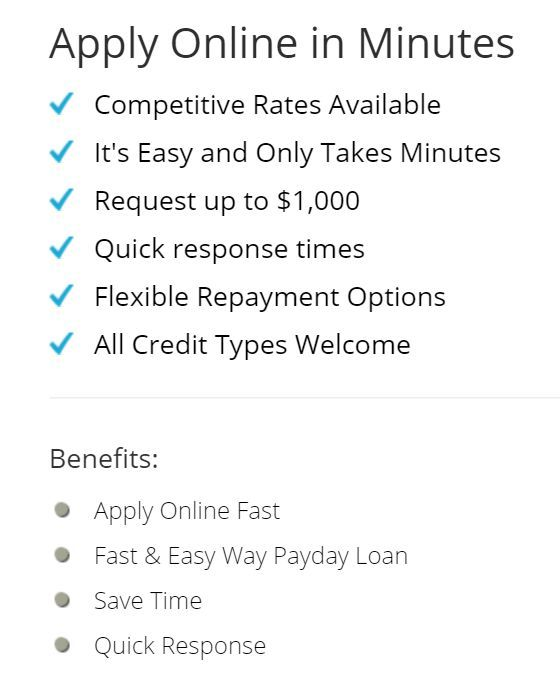 Payday loans instant decision and payout picture 1