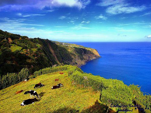 Azores islands, Beautiful Landscape
