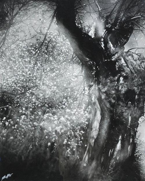 Edward Hartwig, Spring 1970