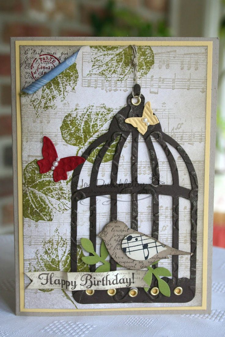 63 Best Bird Cage Cards Images On Pinterest Bird Cage Bird Cards