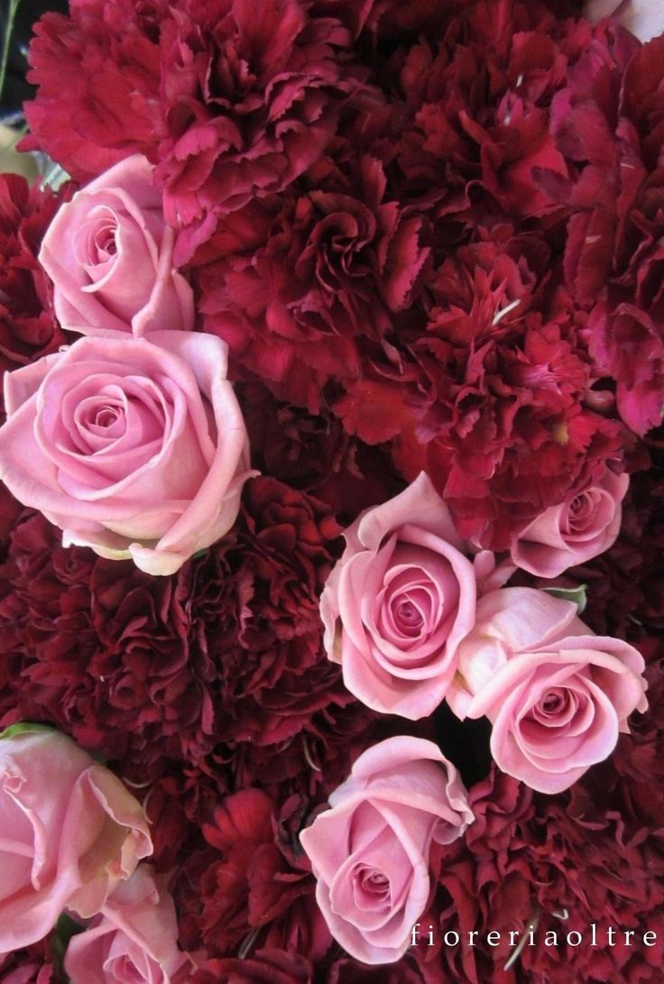Fioreria Oltre/ Pink roses and red carnations