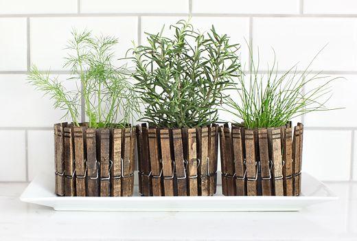 Grampos de roupa para vasos de plantas aromáticas!