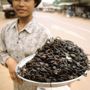 Fried Tarantulas  Where to Get It: Cambodia Looking for a filling mid-afternoon snack? If you're in Skuon, Cambodia, the top choice is definitely fried tarantulas — head, legs, fangs, and all!