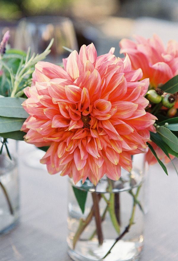 Colorful Dahlia Wedding Centerpiece Event Planner: http://www.amynichols.com Photo: http://www.byleah.com Flowers: http://www.nataliebowendesigns.com