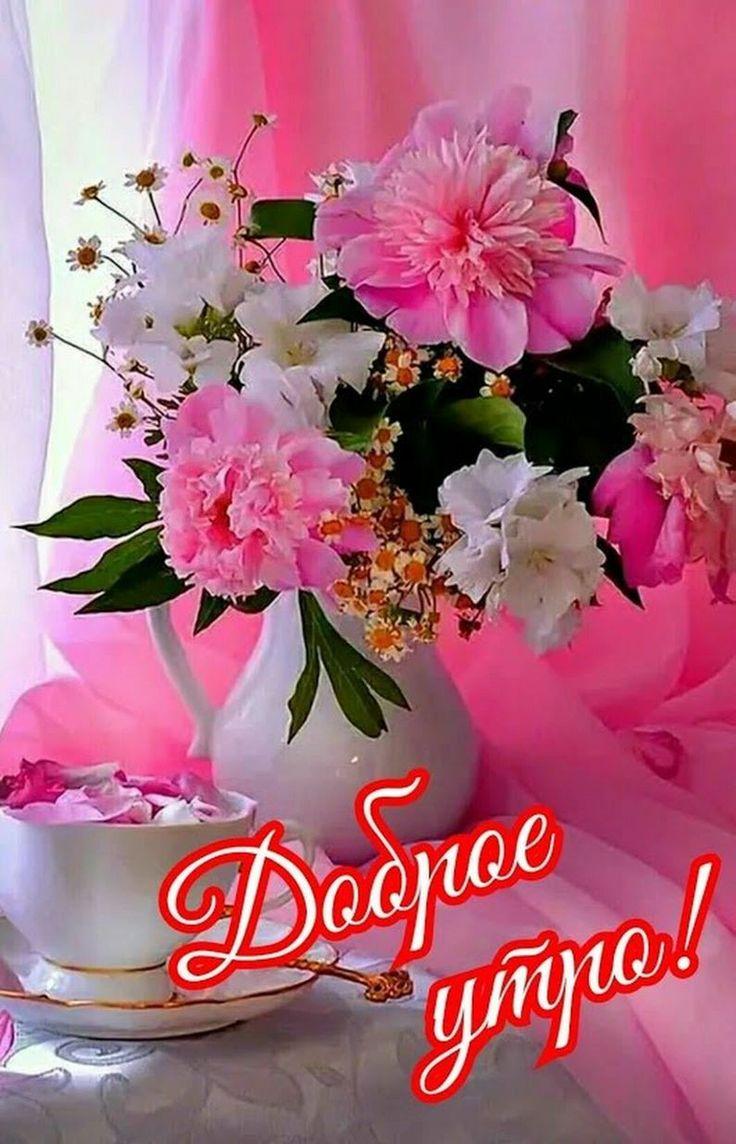 основном живут открытка доброе утро большие цветы частности, годящуюся внучки