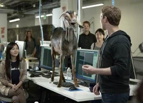 Goat steals Maaaa-rk Zuckerbergs thunder in ad - April 13, 2013