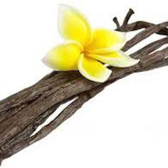 Profumo vaniglia bomboniere gessetti profumati,fai da te,battesimo,matrimonio,profumo,made in italy,fatto a mano.