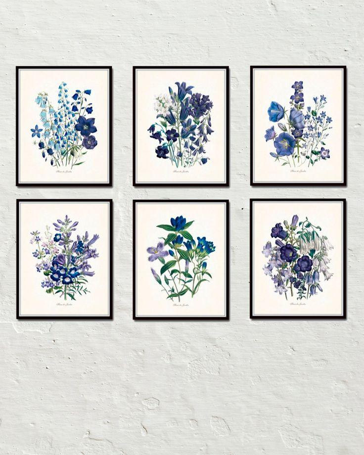 Fleurs De Jardin Blue Series - Botanical Print Set - Printed on archival canvas - Makes a charming vintage display - Multiple Sizes - Free US Shipping – Belle Maison Art