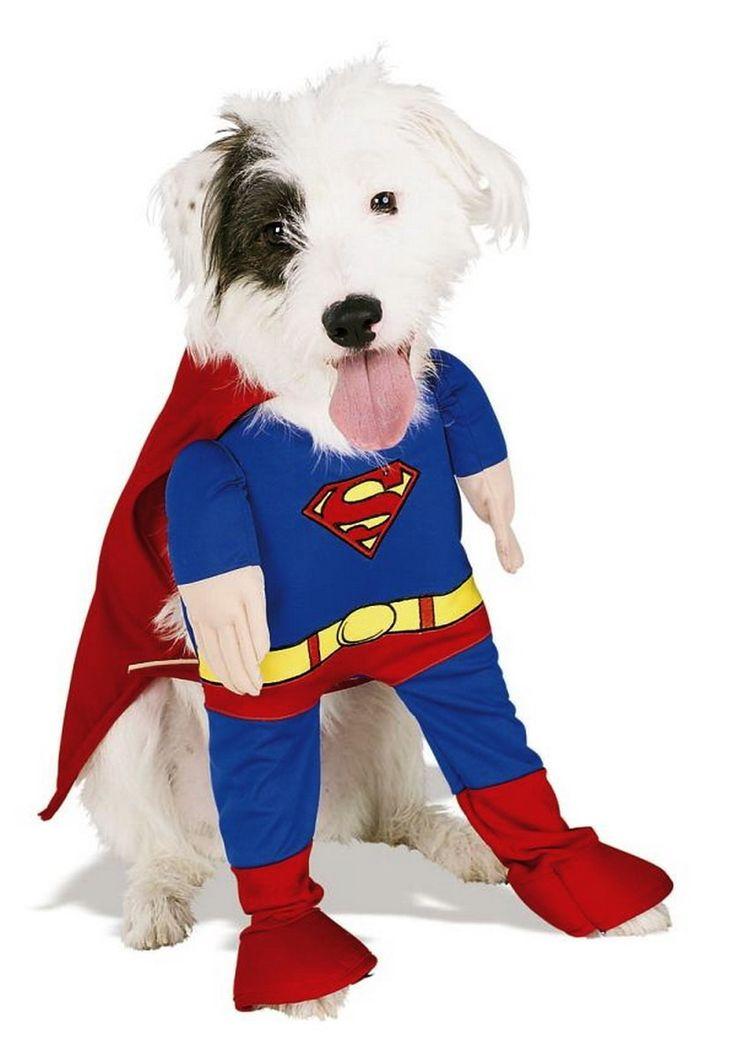 карнавальный костюм с человечком для собак: 13 тыс изображений найдено в Яндекс.Картинках
