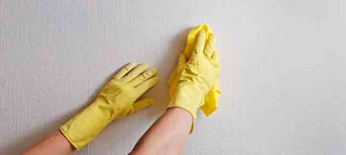 Uma parede com marcas de dedos, não fica nada bonito, mas é normal acontecer. Principalmente junto dos interruptores, perto dos rodapés…, acontece que a parede esteja suja com marcas de dedos ou marca de sapatilha do seu filho:) Para limpar essas marcas de forma ecológica e sem estragar a pintura,utilize …
