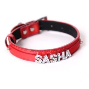 Personalised Collar for Cat or Dog