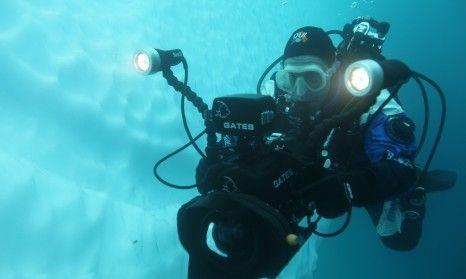Polar diving close up