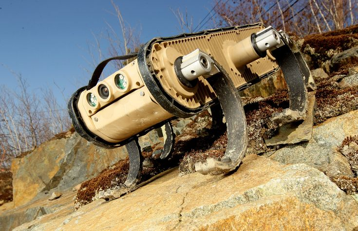 #Robots from #Google? Why not! https://www.facebook.com/photo.php?fbid=395719627198290&set=a.316796571757263.1073741826.316789155091338&type=1&theater