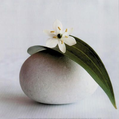 ZEN STONE AND WHITE FLOWER   The man who removes a mountain begins by carrying away small stones