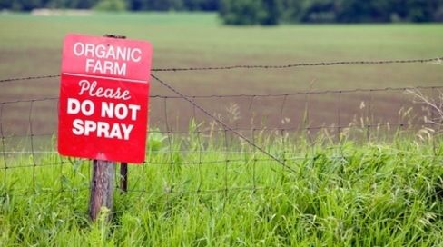 Center for Food Safety | News Room | Victory!! Pesticide Contamination Prohibited from Organic Production