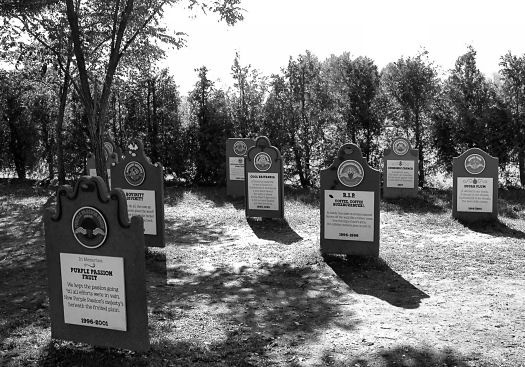 A Group of Flavors Past How many people are mourning Purple Passion Fruit? Ben and Jerry's Flavor Graveyard  Waterbury, VT